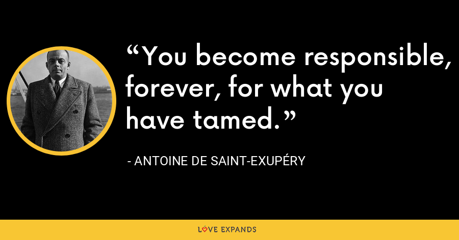 You become responsible, forever, for what you have tamed. - Antoine de Saint-Exupéry