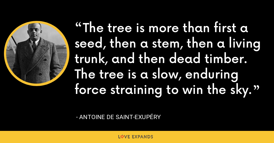 The tree is more than first a seed, then a stem, then a living trunk, and then dead timber. The tree is a slow, enduring force straining to win the sky. - Antoine de Saint-Exupéry