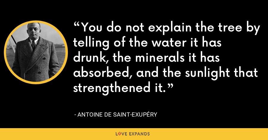 You do not explain the tree by telling of the water it has drunk, the minerals it has absorbed, and the sunlight that strengthened it. - Antoine de Saint-Exupéry