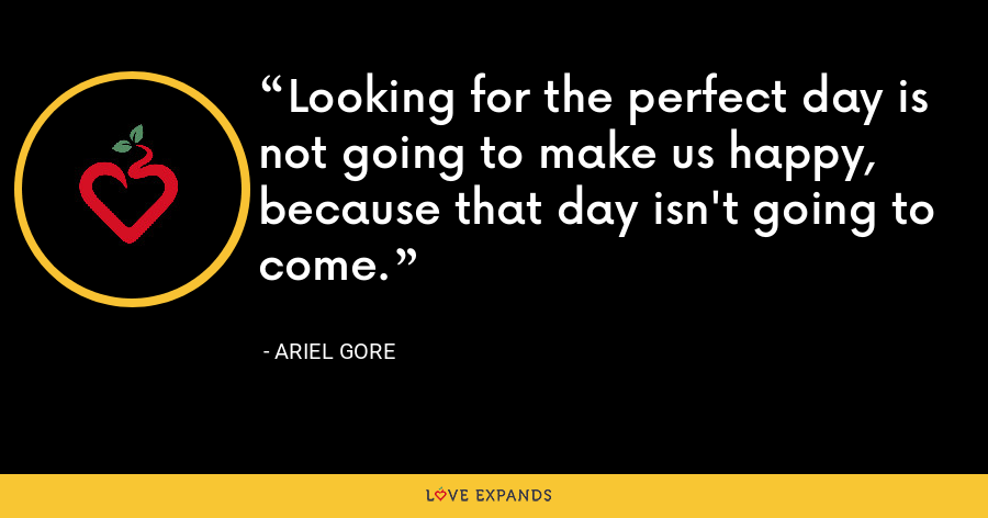 Looking for the perfect day is not going to make us happy, because that day isn't going to come. - Ariel Gore