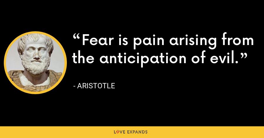Fear is pain arising from the anticipation of evil. - Aristotle