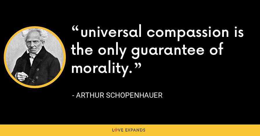 universal compassion is the only guarantee of morality. - Arthur Schopenhauer