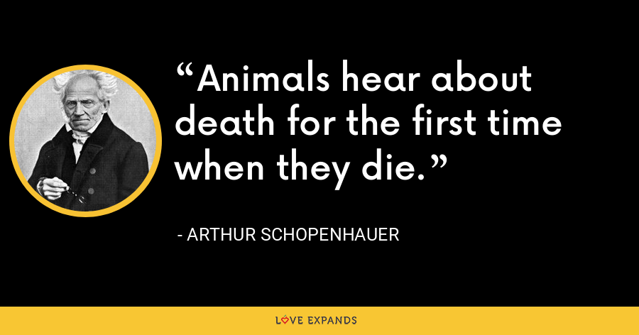 Animals hear about death for the first time when they die. - Arthur Schopenhauer