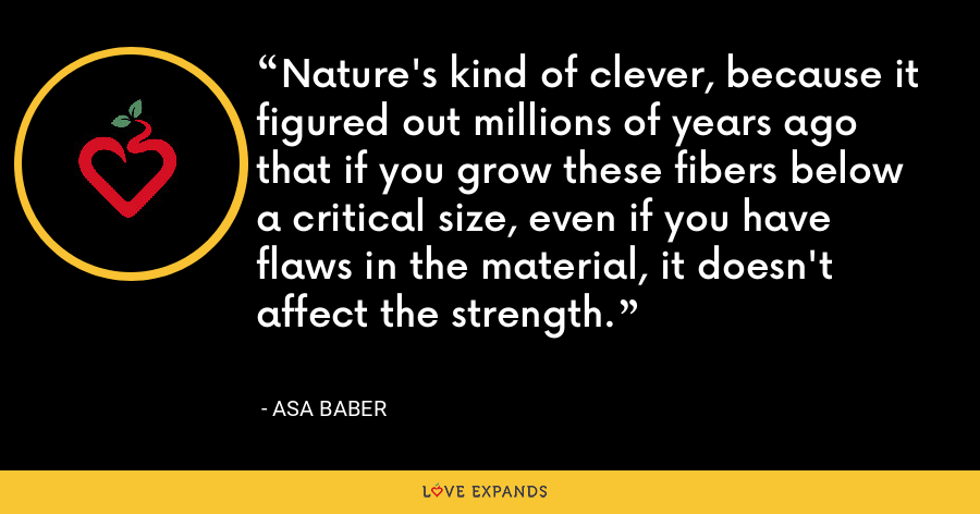 Nature's kind of clever, because it figured out millions of years ago that if you grow these fibers below a critical size, even if you have flaws in the material, it doesn't affect the strength. - Asa Baber