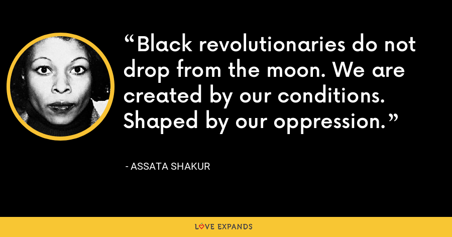 Black revolutionaries do not drop from the moon. We are created by our conditions. Shaped by our oppression. - Assata Shakur