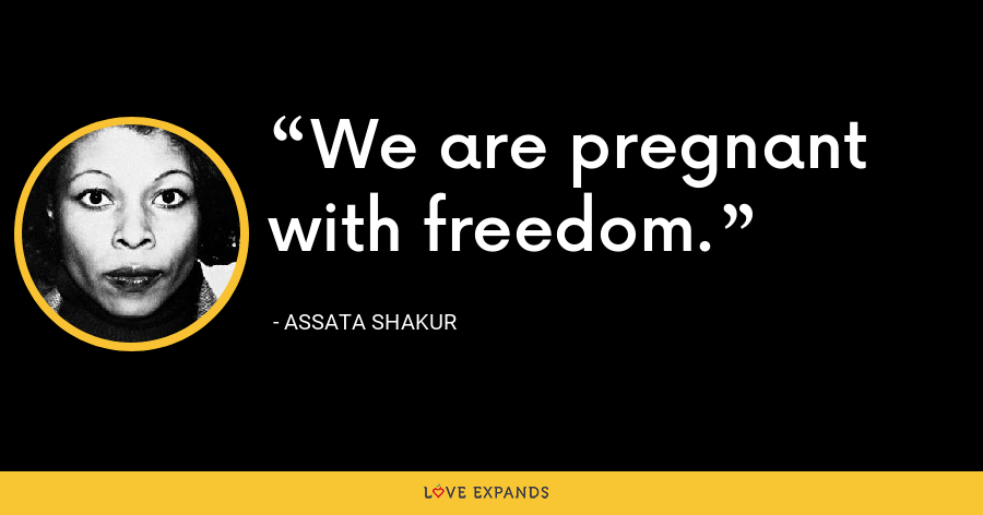 We are pregnant with freedom. - Assata Shakur