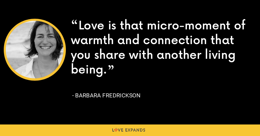 Love is that micro-moment of warmth and connection that you share with another living being. - Barbara Fredrickson