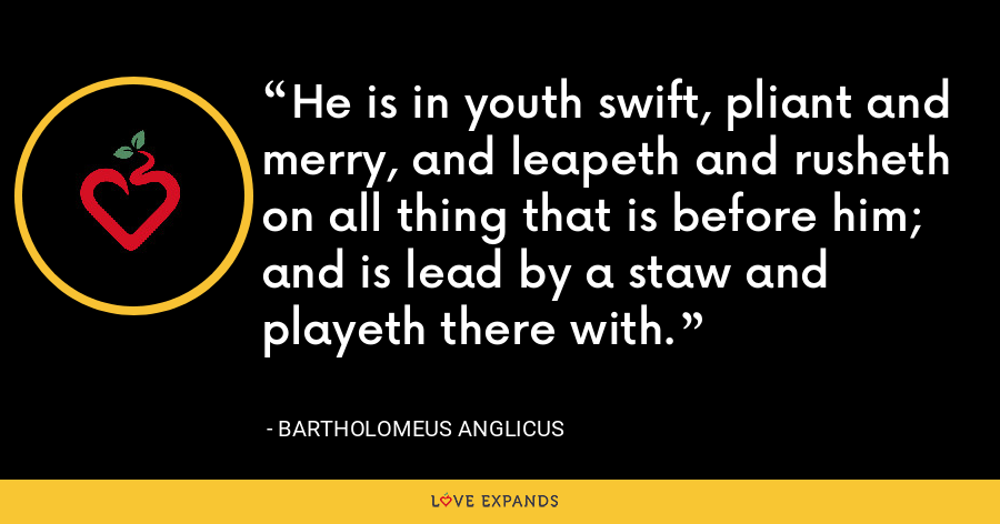 He is in youth swift, pliant and merry, and leapeth and rusheth on all thing that is before him; and is lead by a staw and playeth there with. - Bartholomeus Anglicus