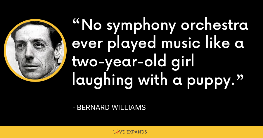 No symphony orchestra ever played music like a two-year-old girl laughing with a puppy. - Bernard Williams