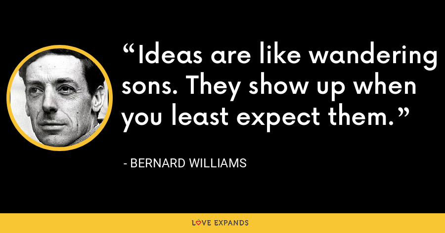 Ideas are like wandering sons. They show up when you least expect them. - Bernard Williams