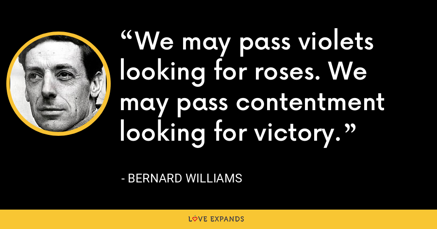 We may pass violets looking for roses. We may pass contentment looking for victory. - Bernard Williams