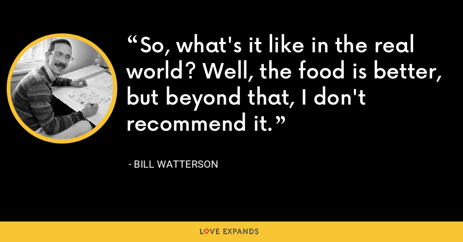 So, what's it like in the real world? Well, the food is better, but beyond that, I don't recommend it. - Bill Watterson