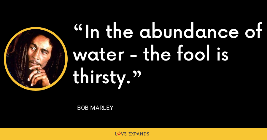 In the abundance of water - the fool is thirsty. - Bob Marley