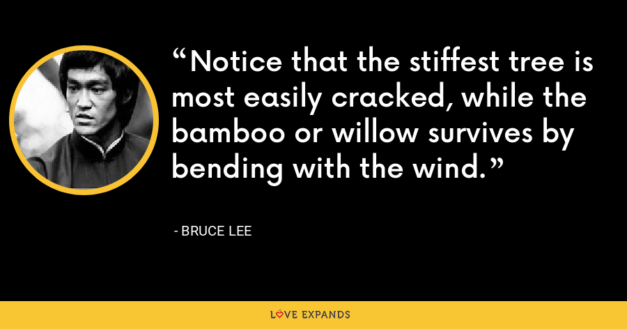 Notice that the stiffest tree is most easily cracked, while the bamboo or willow survives by bending with the wind. - Bruce Lee