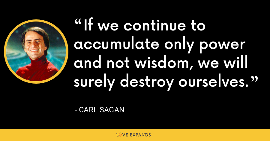 If we continue to accumulate only power and not wisdom, we will surely destroy ourselves. - Carl Sagan