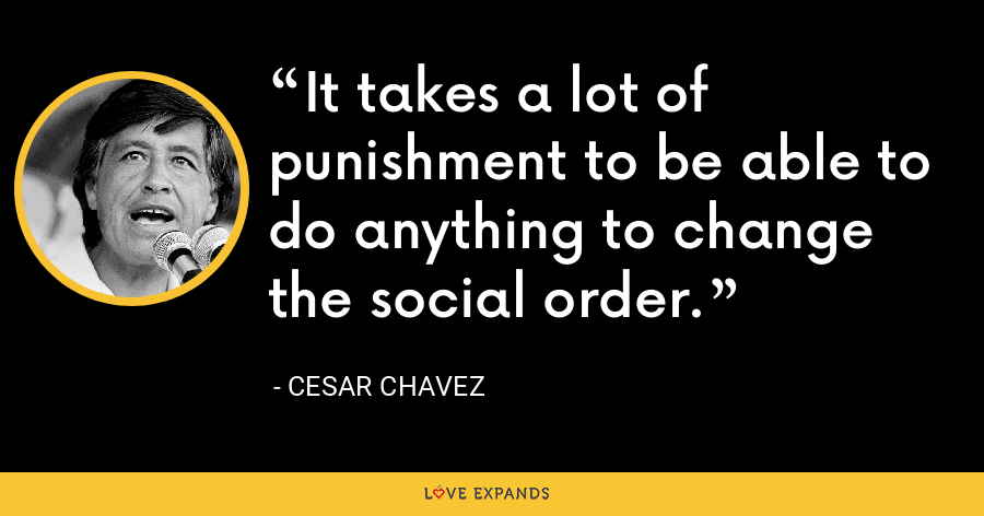 It takes a lot of punishment to be able to do anything to change the social order. - Cesar Chavez