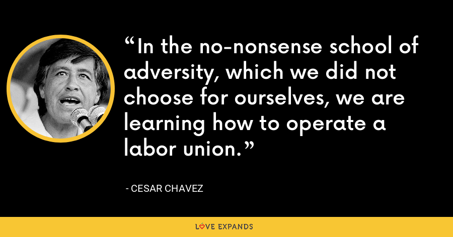 In the no-nonsense school of adversity, which we did not choose for ourselves, we are learning how to operate a labor union. - Cesar Chavez