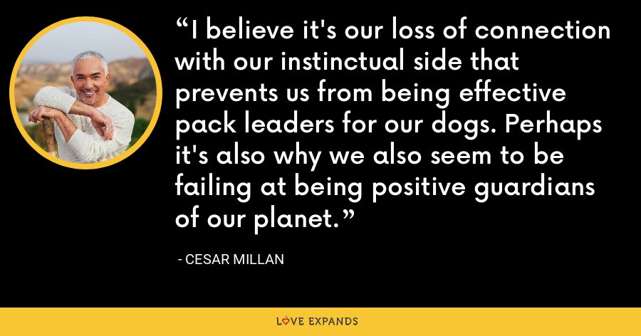 I believe it's our loss of connection with our instinctual side that prevents us from being effective pack leaders for our dogs. Perhaps it's also why we also seem to be failing at being positive guardians of our planet. - Cesar Millan
