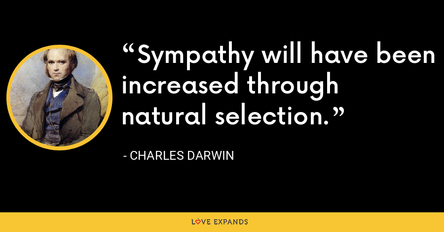 Sympathy will have been increased through natural selection. - Charles Darwin