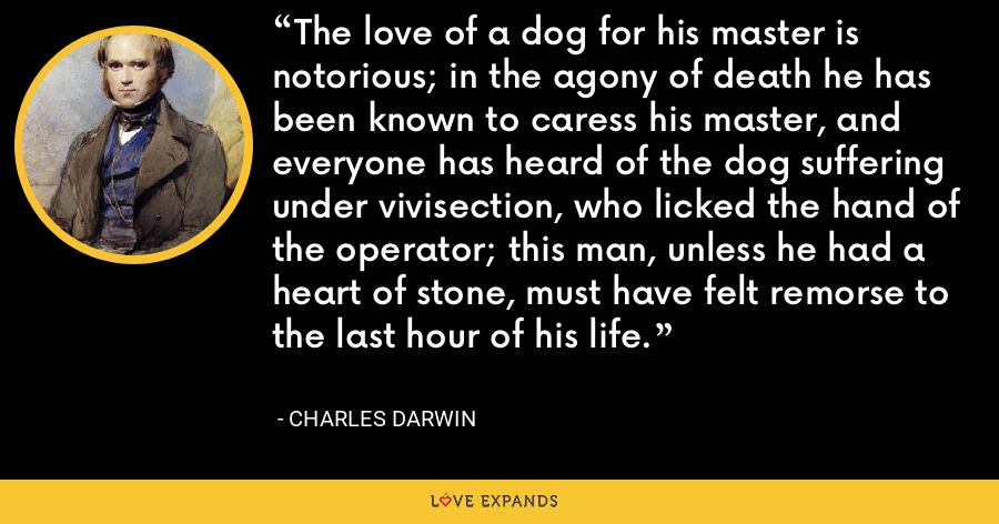 The love of a dog for his master is notorious; in the agony of death he has been known to caress his master, and everyone has heard of the dog suffering under vivisection, who licked the hand of the operator; this man, unless he had a heart of stone, must have felt remorse to the last hour of his life. - Charles Darwin