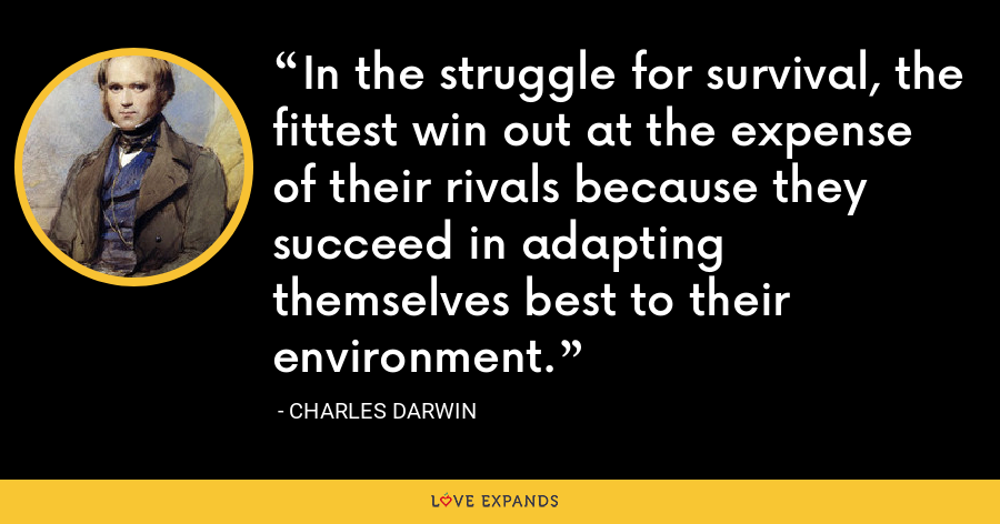 In the struggle for survival, the fittest win out at the expense of their rivals because they succeed in adapting themselves best to their environment. - Charles Darwin
