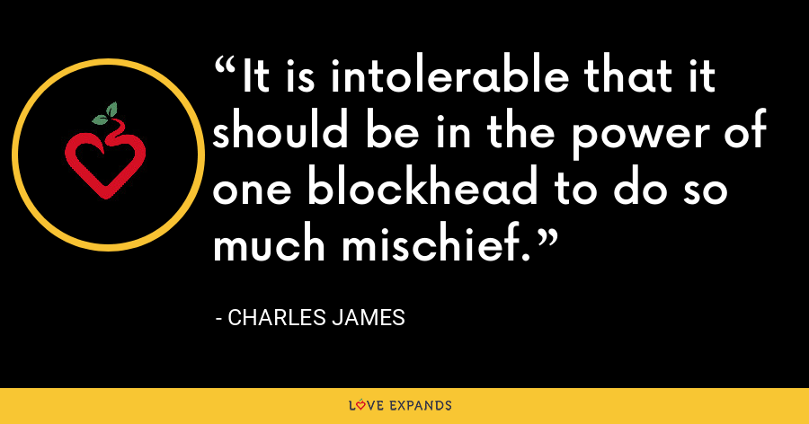 It is intolerable that it should be in the power of one blockhead to do so much mischief. - Charles James