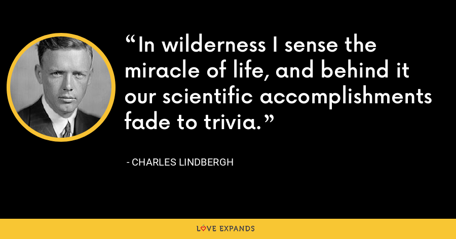 In wilderness I sense the miracle of life, and behind it our scientific accomplishments fade to trivia. - Charles Lindbergh