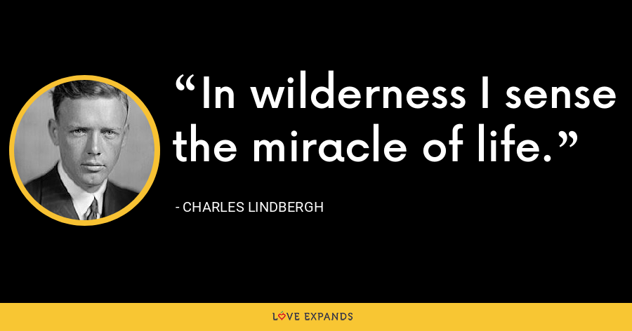 In wilderness I sense the miracle of life. - Charles Lindbergh