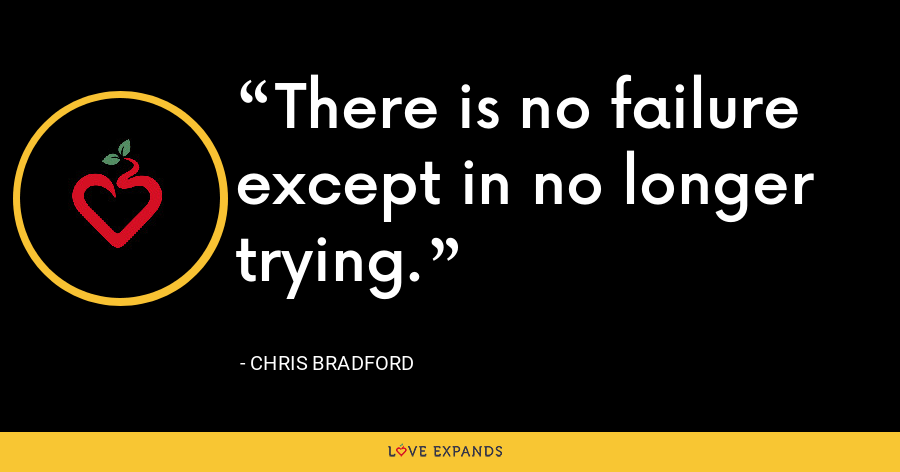 There is no failure except in no longer trying. - Chris Bradford