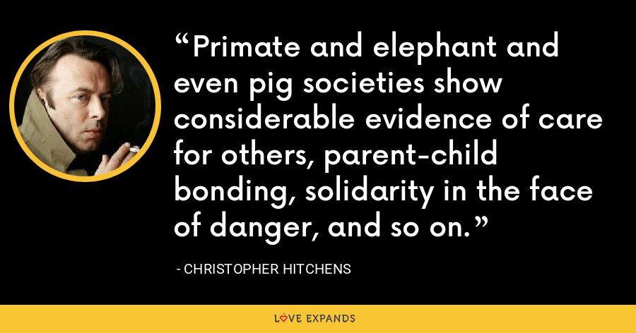 Primate and elephant and even pig societies show considerable evidence of care for others, parent-child bonding, solidarity in the face of danger, and so on. - Christopher Hitchens