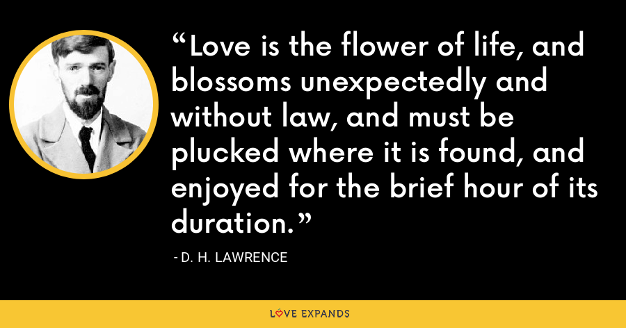 Love is the flower of life, and blossoms unexpectedly and without law, and must be plucked where it is found, and enjoyed for the brief hour of its duration. - D. H. Lawrence