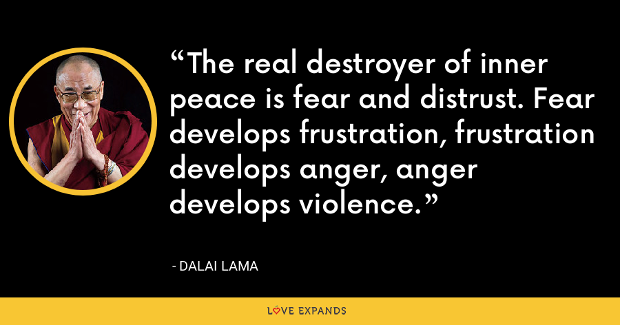 The real destroyer of inner peace is fear and distrust. Fear develops frustration, frustration develops anger, anger develops violence. - Dalai Lama