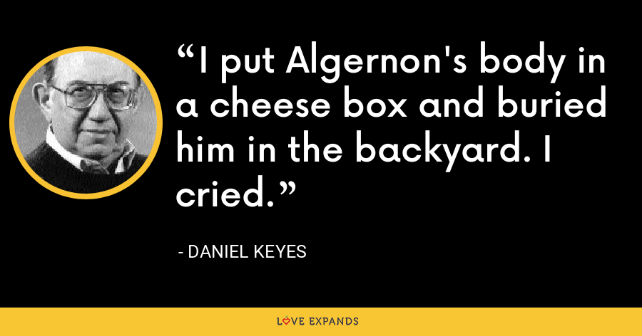 I put Algernon's body in a cheese box and buried him in the backyard. I cried. - Daniel Keyes
