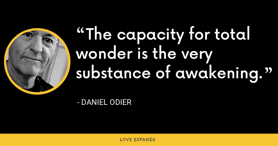 The capacity for total wonder is the very substance of awakening. - Daniel Odier
