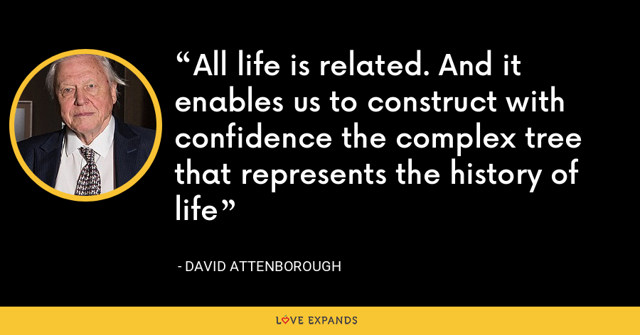All life is related. And it enables us to construct with confidence the complex tree that represents the history of life - David Attenborough