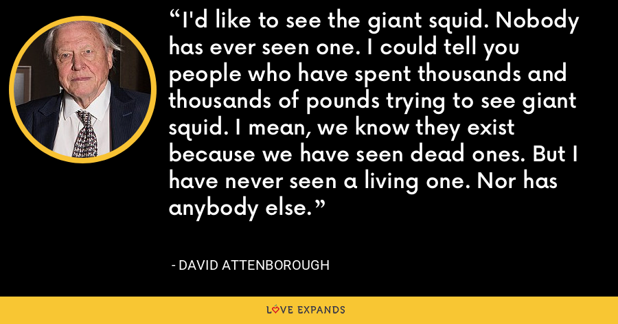 I'd like to see the giant squid. Nobody has ever seen one. I could tell you people who have spent thousands and thousands of pounds trying to see giant squid. I mean, we know they exist because we have seen dead ones. But I have never seen a living one. Nor has anybody else. - David Attenborough