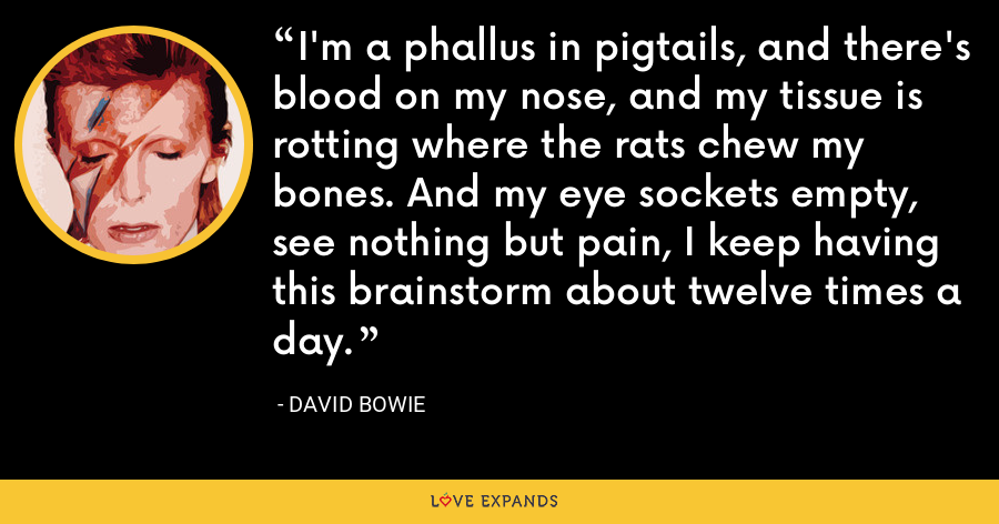 I'm a phallus in pigtails, and there's blood on my nose, and my tissue is rotting where the rats chew my bones. And my eye sockets empty, see nothing but pain, I keep having this brainstorm about twelve times a day. - David Bowie