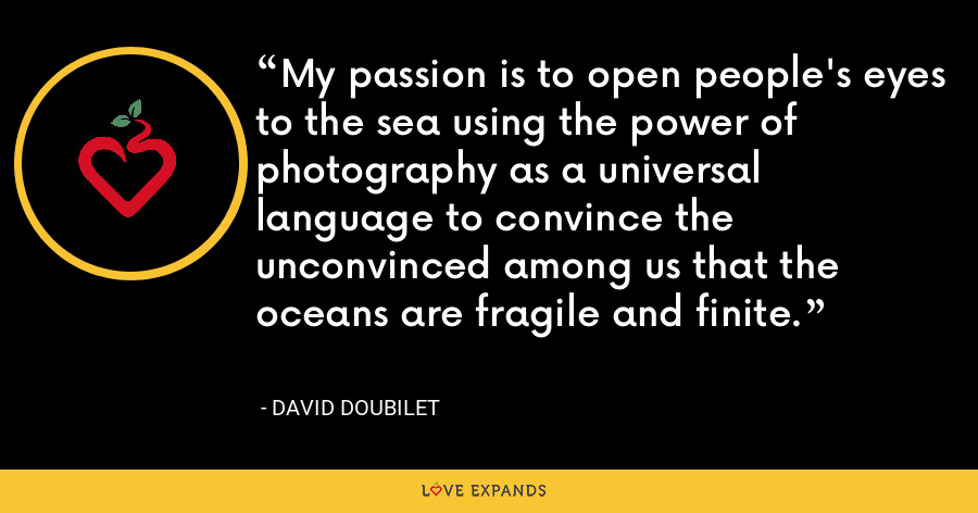 My passion is to open people's eyes to the sea using the power of photography as a universal language to convince the unconvinced among us that the oceans are fragile and finite. - David Doubilet