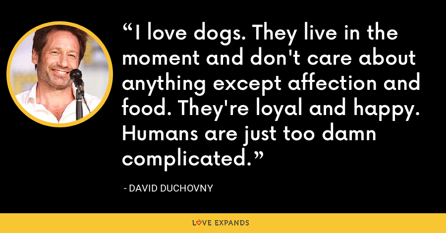 I love dogs. They live in the moment and don't care about anything except affection and food. They're loyal and happy. Humans are just too damn complicated. - David Duchovny