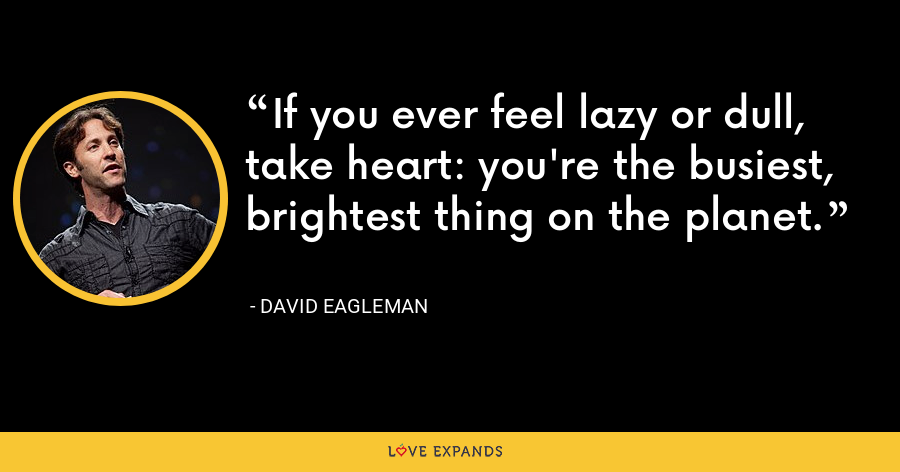 If you ever feel lazy or dull, take heart: you're the busiest, brightest thing on the planet. - David Eagleman