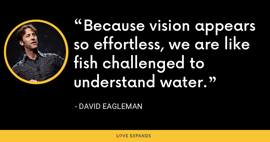 Because vision appears so effortless, we are like fish challenged to understand water. - David Eagleman