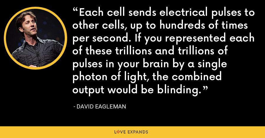 Each cell sends electrical pulses to other cells, up to hundreds of times per second. If you represented each of these trillions and trillions of pulses in your brain by a single photon of light, the combined output would be blinding. - David Eagleman