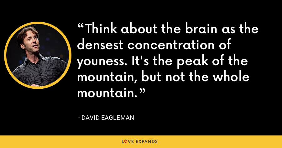 Think about the brain as the densest concentration of youness. It's the peak of the mountain, but not the whole mountain. - David Eagleman