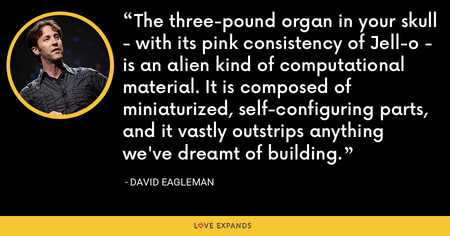 The three-pound organ in your skull - with its pink consistency of Jell-o - is an alien kind of computational material. It is composed of miniaturized, self-configuring parts, and it vastly outstrips anything we've dreamt of building. - David Eagleman