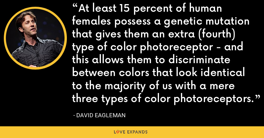 At least 15 percent of human females possess a genetic mutation that gives them an extra (fourth) type of color photoreceptor - and this allows them to discriminate between colors that look identical to the majority of us with a mere three types of color photoreceptors. - David Eagleman