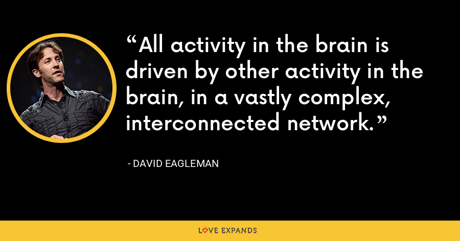 All activity in the brain is driven by other activity in the brain, in a vastly complex, interconnected network. - David Eagleman