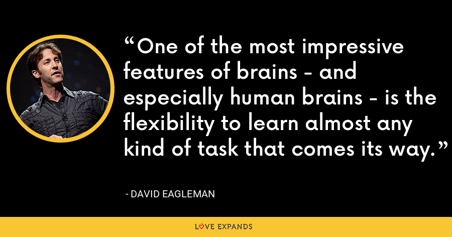 One of the most impressive features of brains - and especially human brains - is the flexibility to learn almost any kind of task that comes its way. - David Eagleman