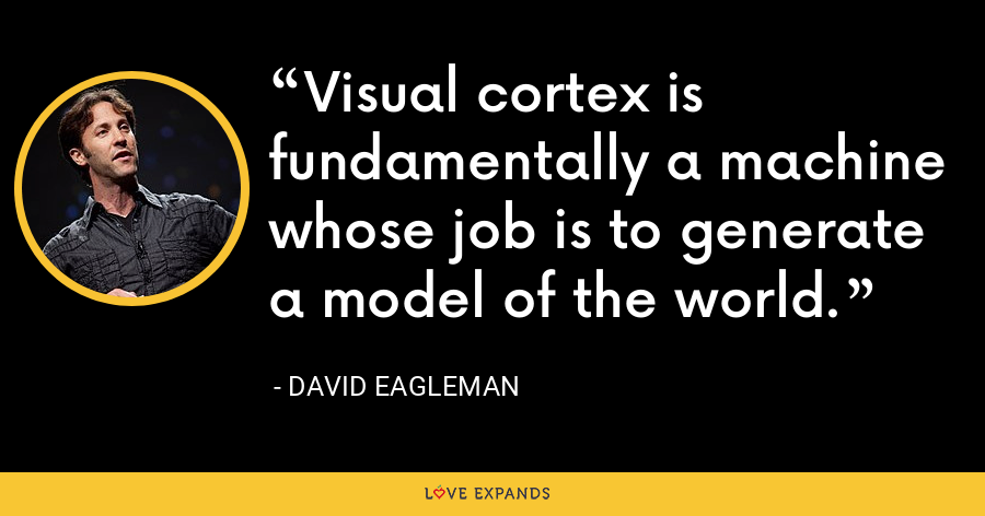 Visual cortex is fundamentally a machine whose job is to generate a model of the world. - David Eagleman