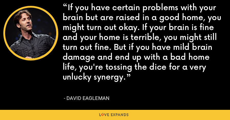 If you have certain problems with your brain but are raised in a good home, you might turn out okay. If your brain is fine and your home is terrible, you might still turn out fine. But if you have mild brain damage and end up with a bad home life, you're tossing the dice for a very unlucky synergy. - David Eagleman