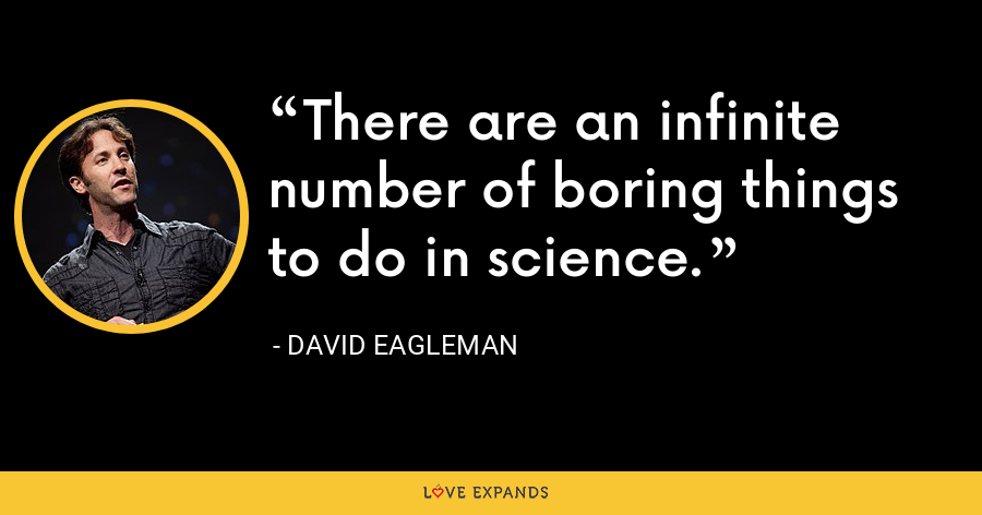 There are an infinite number of boring things to do in science. - David Eagleman